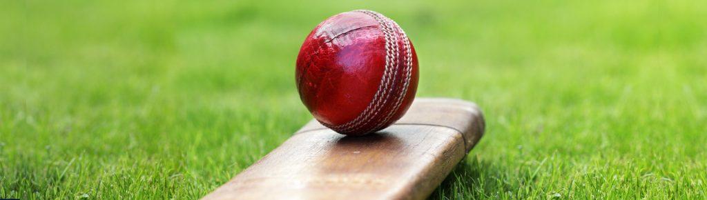 O-Week Twilight Cricket
