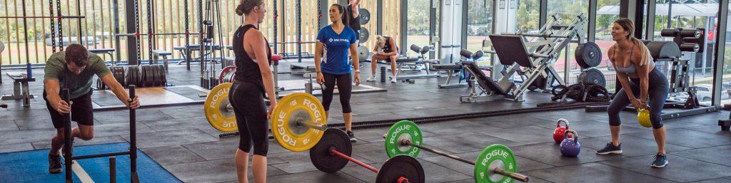 Sport & Fitness Info Session – Virtual